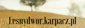 noclegi w Leśnym Dworze w Karpaczu